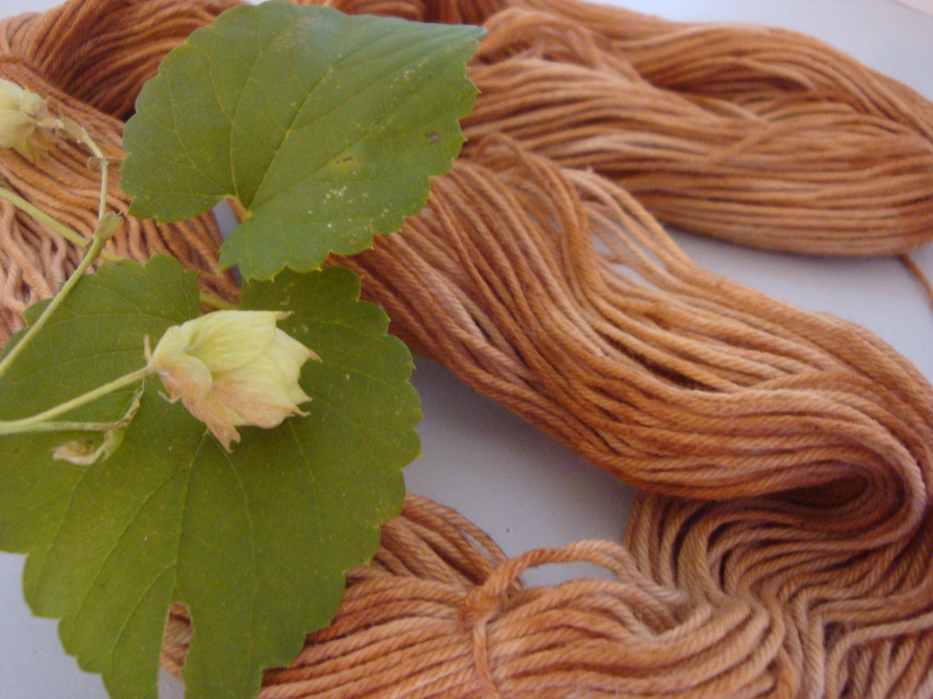 Natural dyeing with hops vine by Donna Kallner.