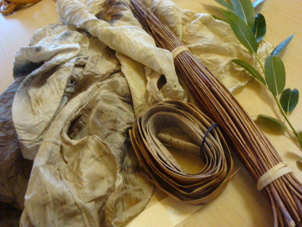Silk fabric dyeing with willow, natural dyeing by Donna Kallner.