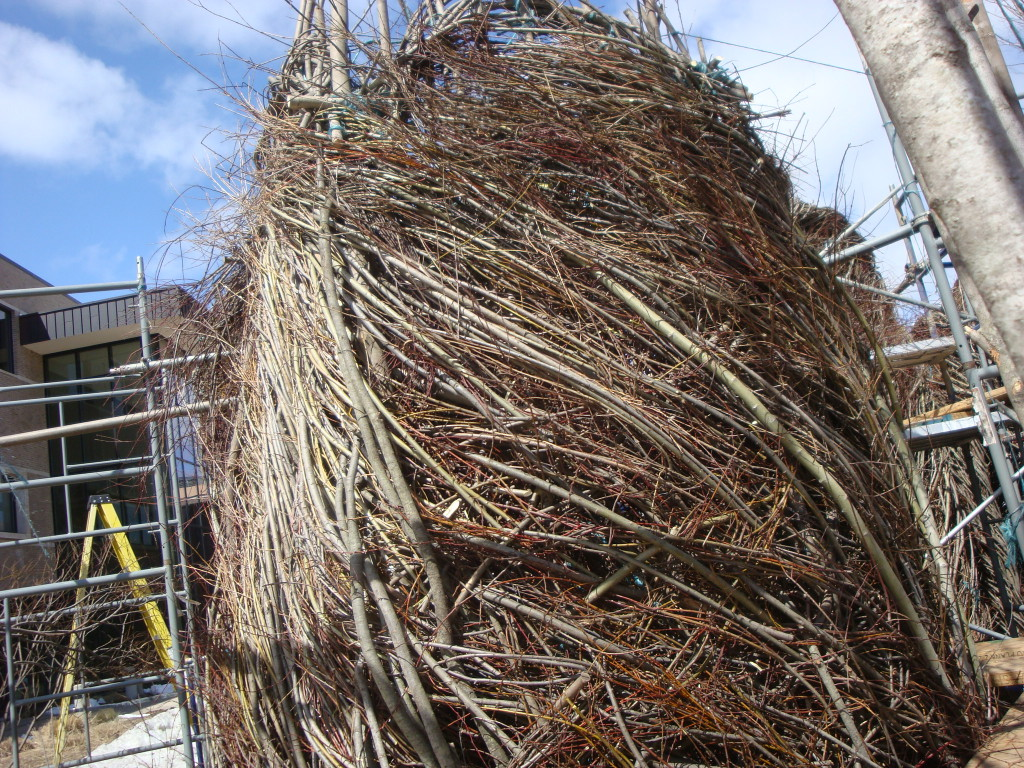 Work in progress on Patrick Dougherty installation at University of Wisconsin - Stevens Point