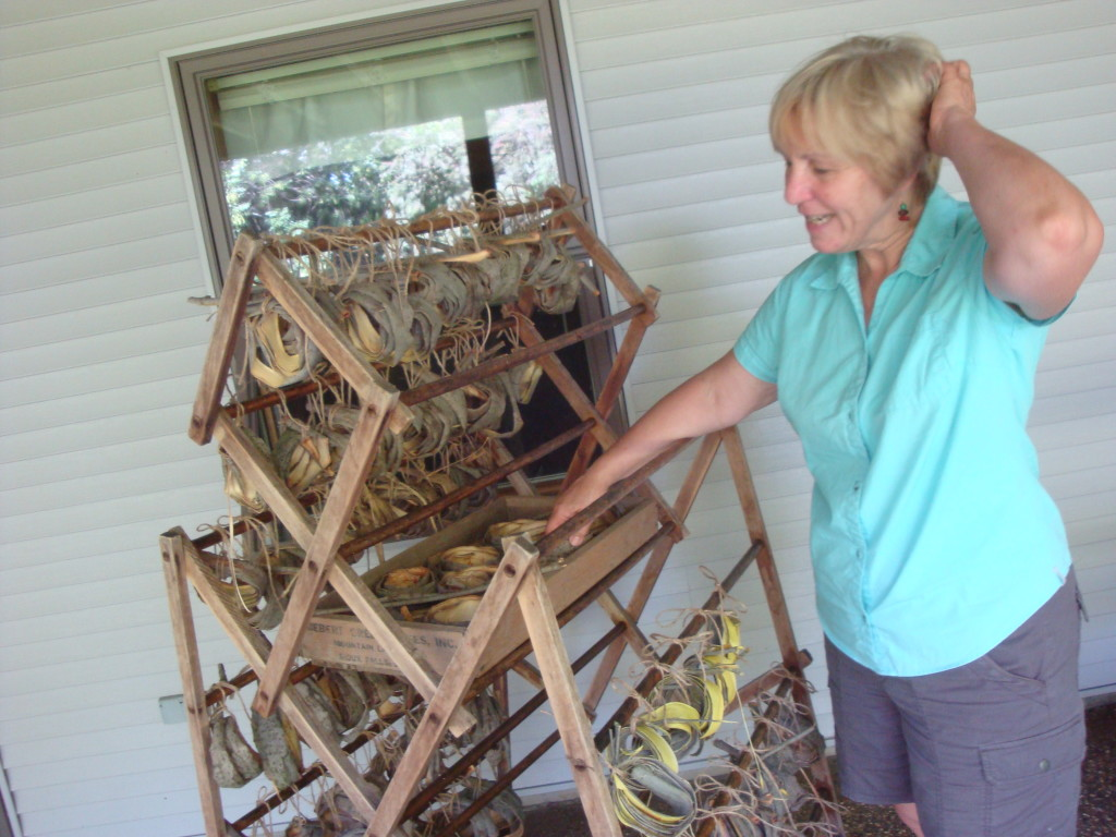 Jo Campbell-Amsler with willow bark she's drying.