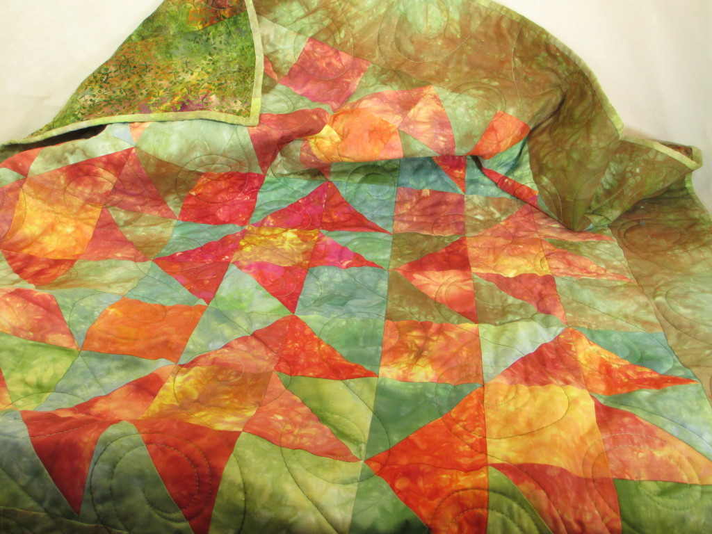 Hand-dyed fabric by Donna Kallner plus Quilting By Jeannie.