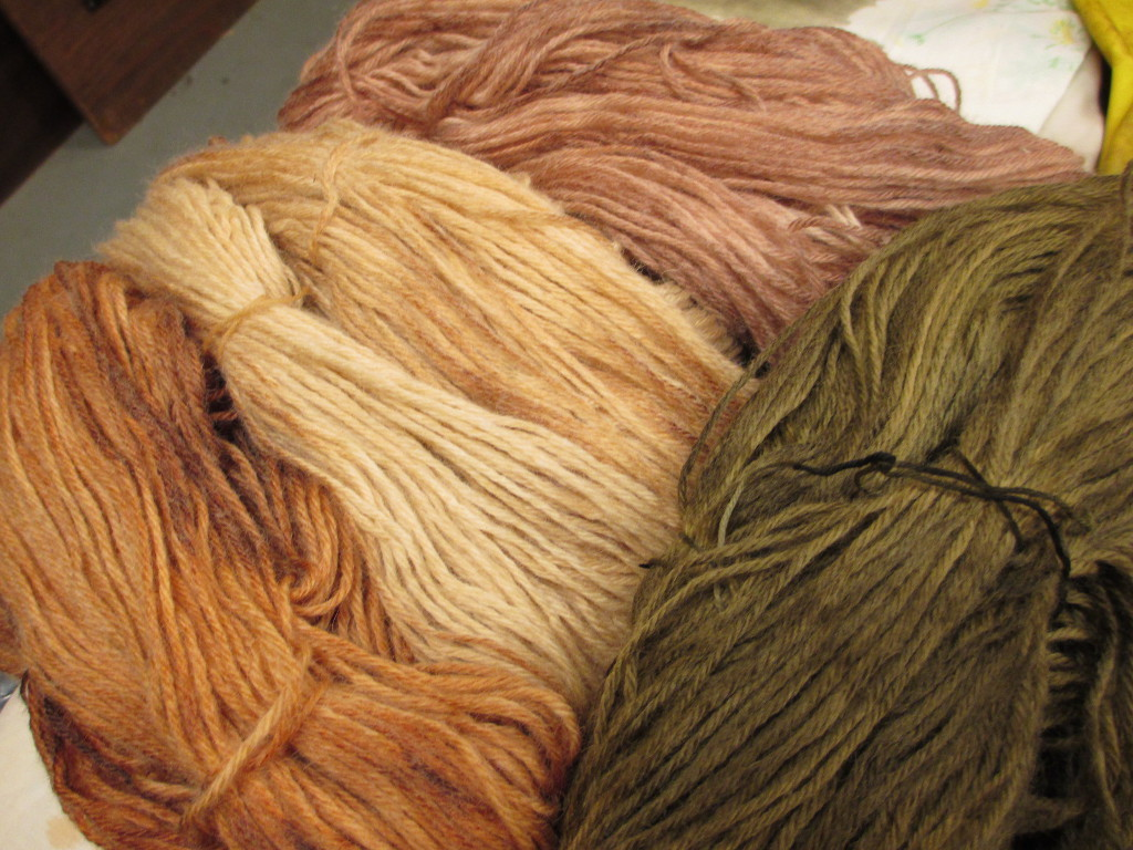 Alkaline extraction natural dye experiments by Donna Kallner.