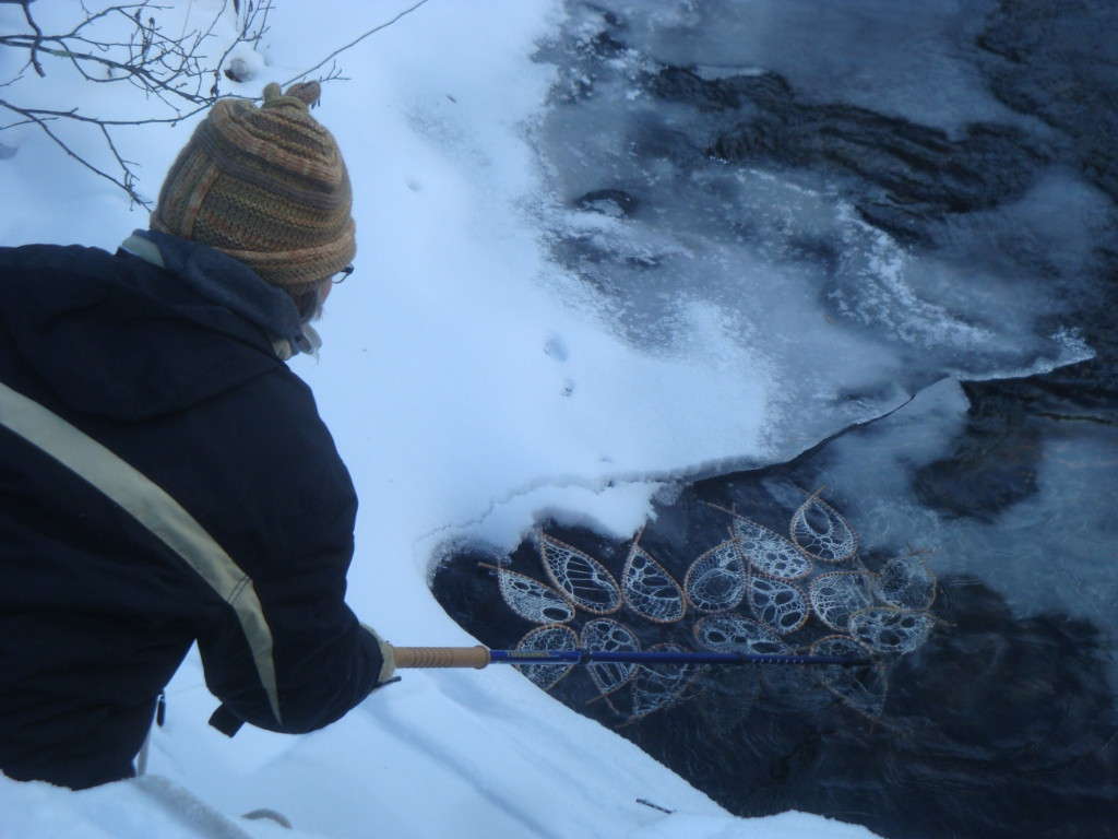 Rural artist Donna Kallner positioning looping installation in water.