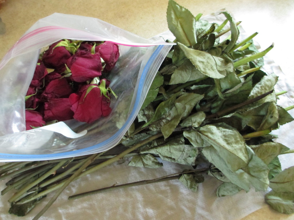 Recycled anniversary roses are saved for ecoprinting.