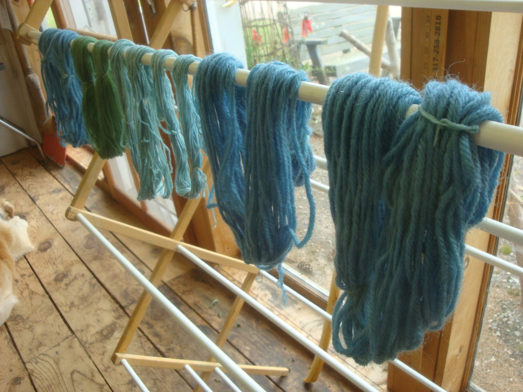 Yarn dyed with fresh indigo grown in northern Wisconsin by Donna Kallner.