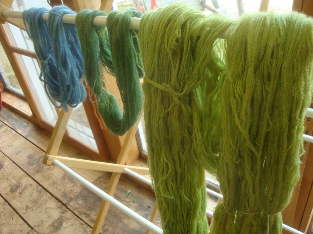 Rhubarb leaf dyed wool yarn overdyed with fresh leaf Japanese indigo.