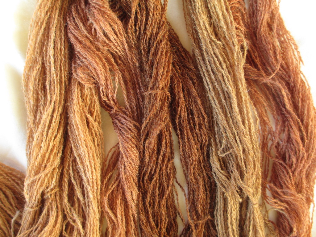 Yarn naturally dyed with willow leaves, and a modifier sample set.