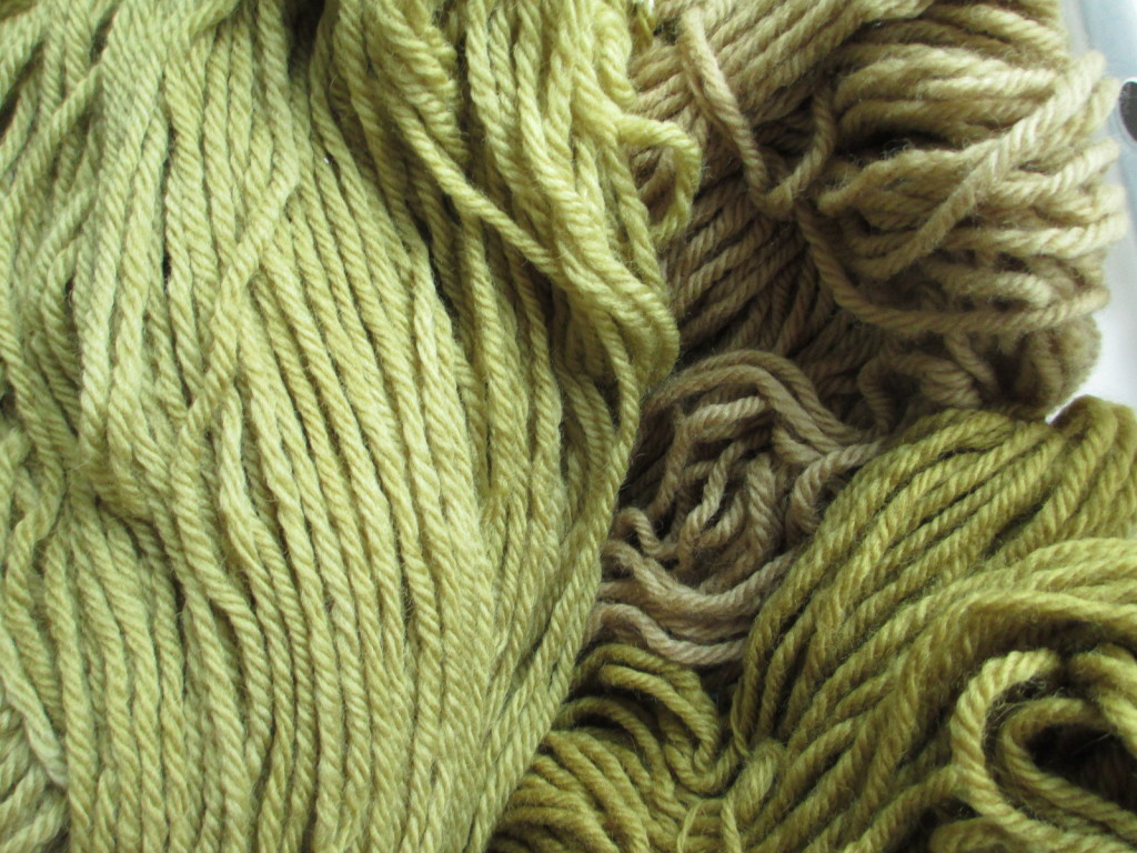 Wool yarn plant-dyed with mullein leaves.