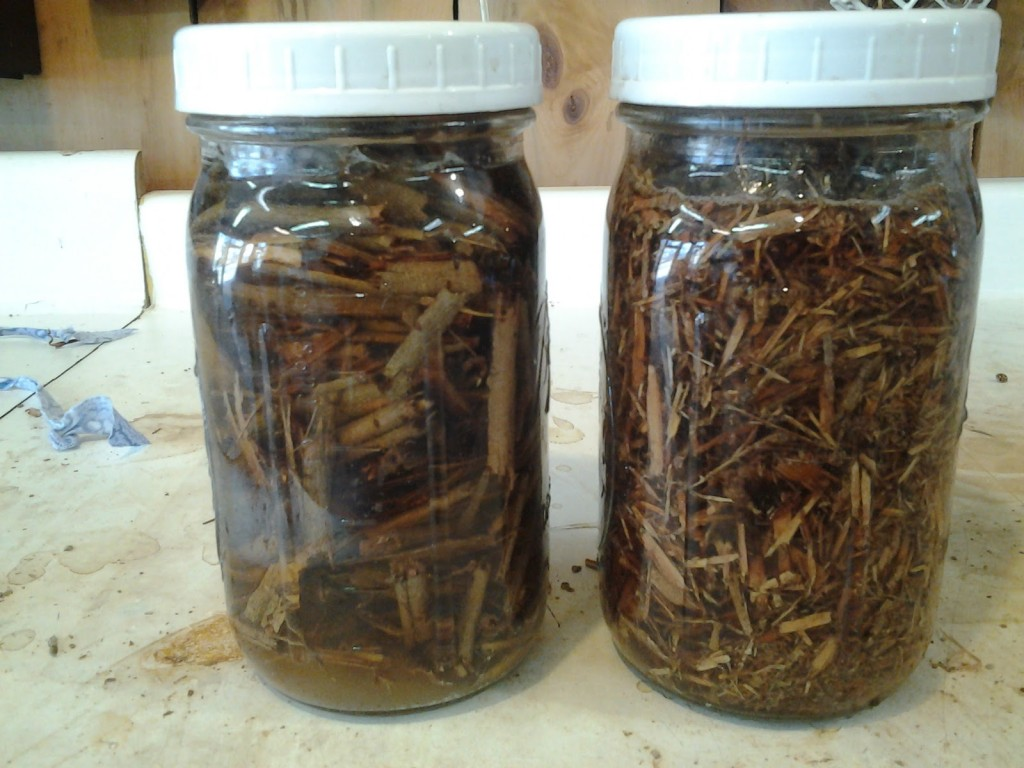 Willow bark alkaline extract natural dye experiment -- broken versus shredded.