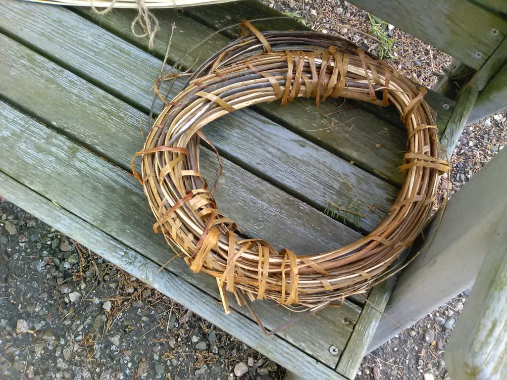 A coil of barked willow split and coiled for boiling.