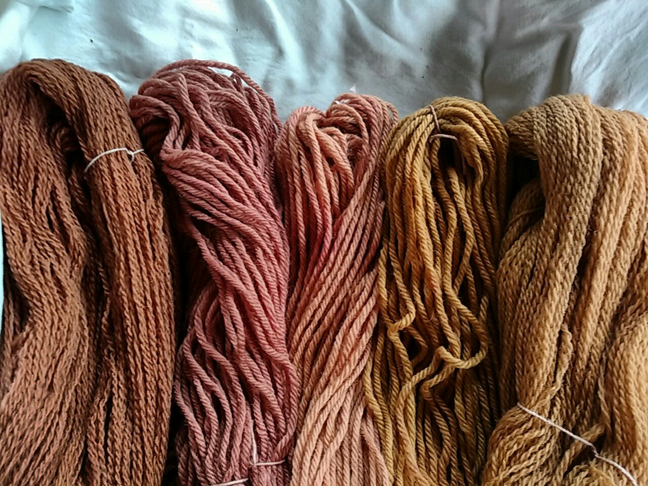 Willow bark natural dye on wool.